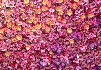Flower Wall Rentals